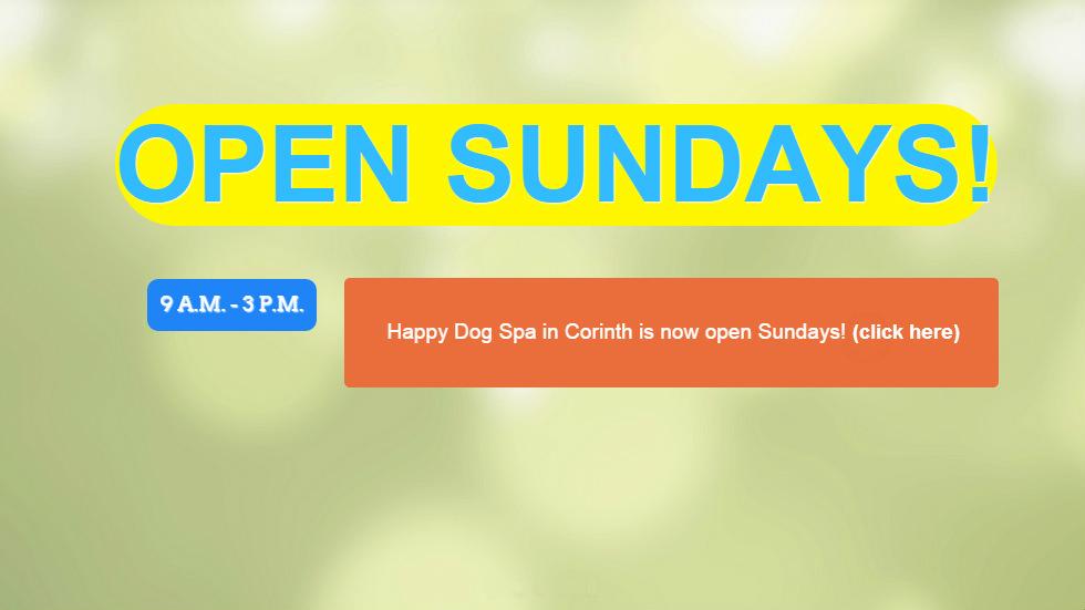 Open-Sunday